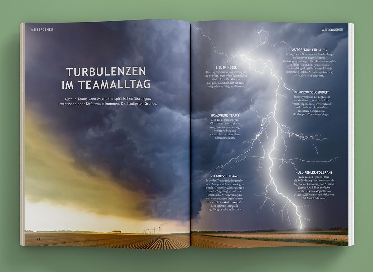 Turbulenzen im Teamalltag - Innenansicht Wolfsspur Heft 9