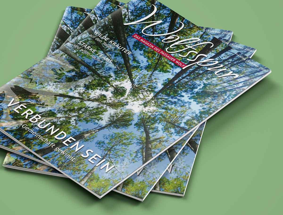Mehrere Hefte übereinander, Titelbild von Wolfsspur - Das Magazin des Passauer Wolf