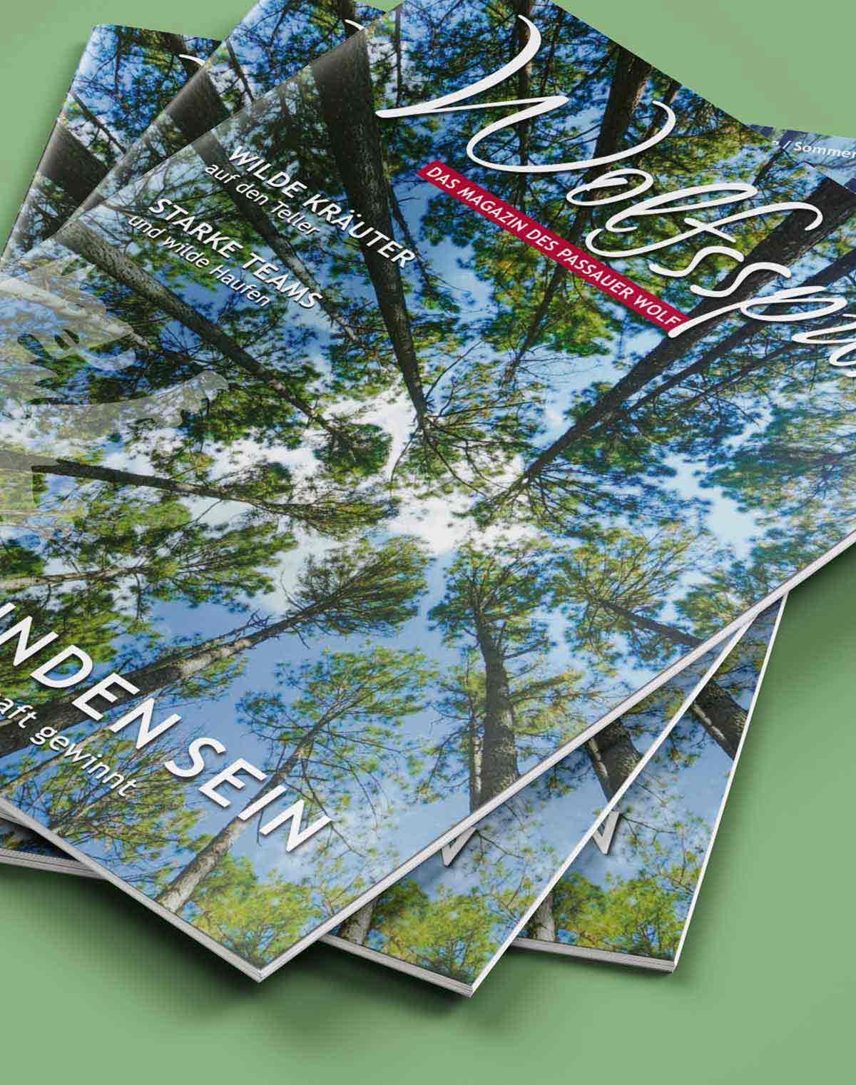Titelbild Design von Wolfsspur Heft 9 von c-c-design.de